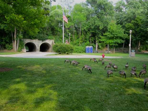 The creek is gone, and both tunnels are now used for car traffic at Hubbard Park. Carl Swanson photo